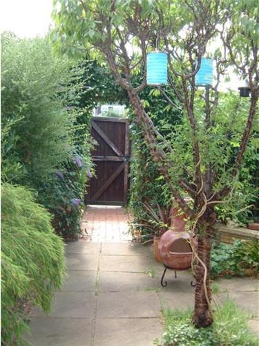 vegetation around your house
